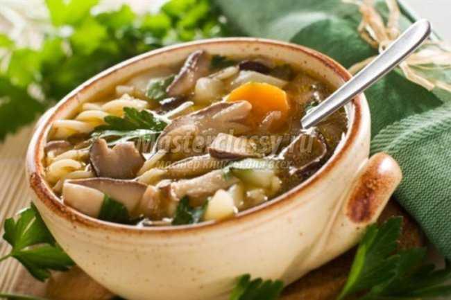 Грибной суп в мультиварке: аппетитные рецепты