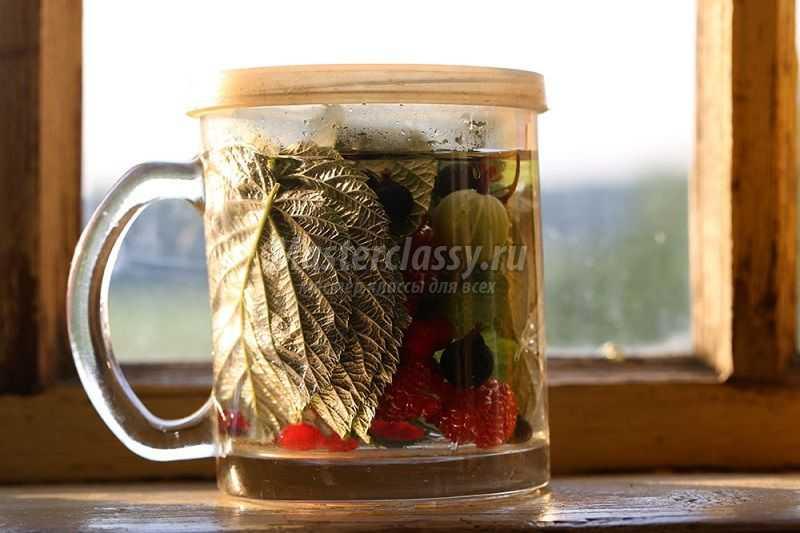 приготовить витаминный напиток