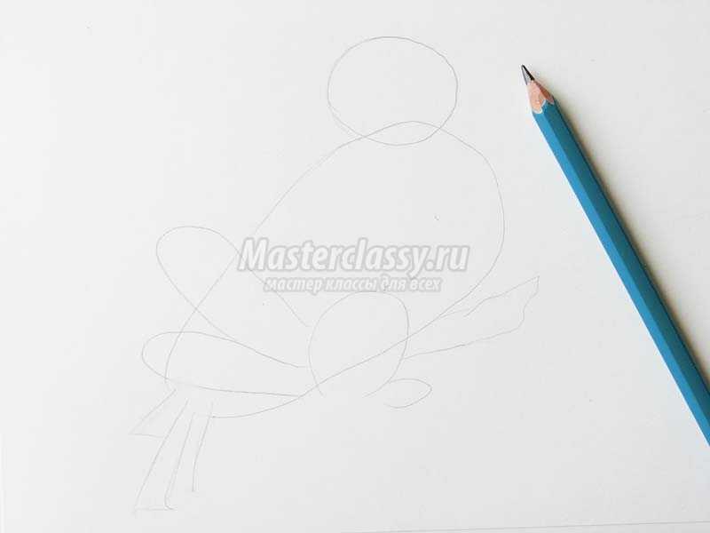 как нарисовать снегиря