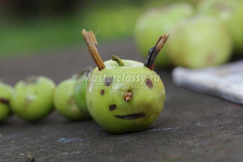 гусеница из яблок поделка