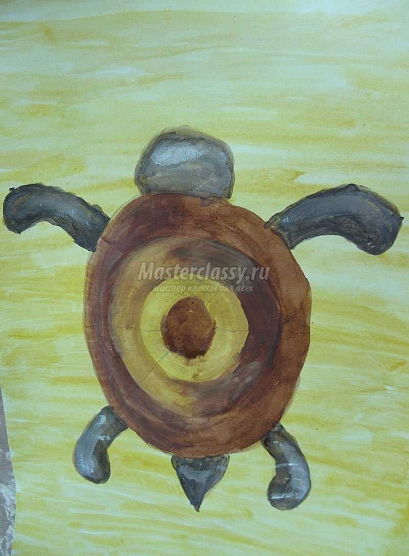 рисуем черепашку