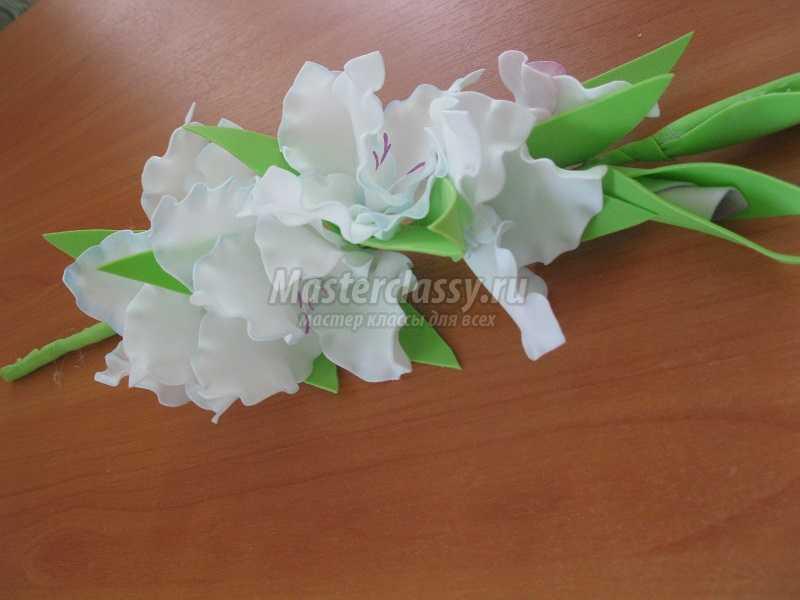 Цветок с листьями как у помидора