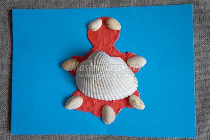 поделка черепашка из природного материала