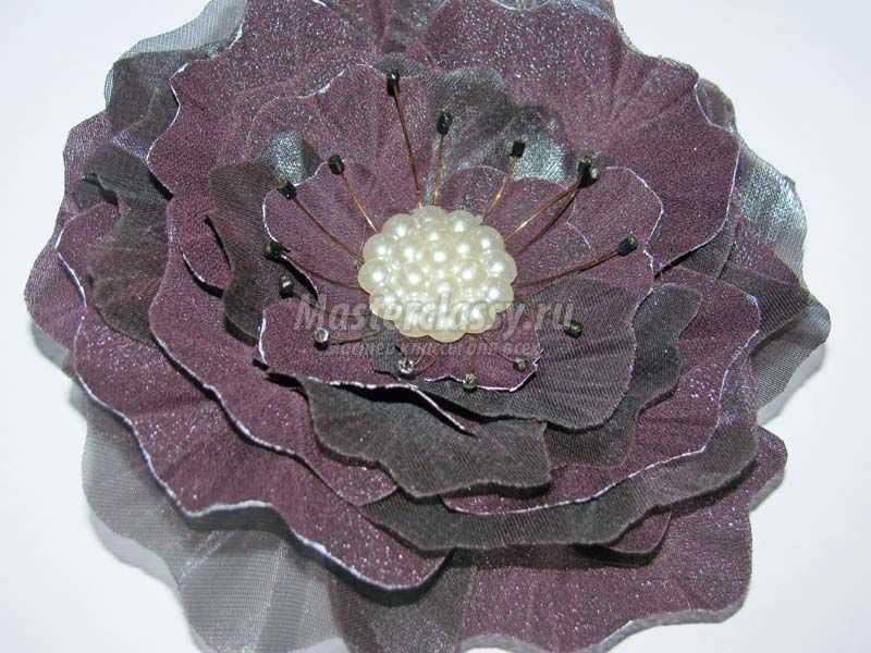 цветок шифона фото