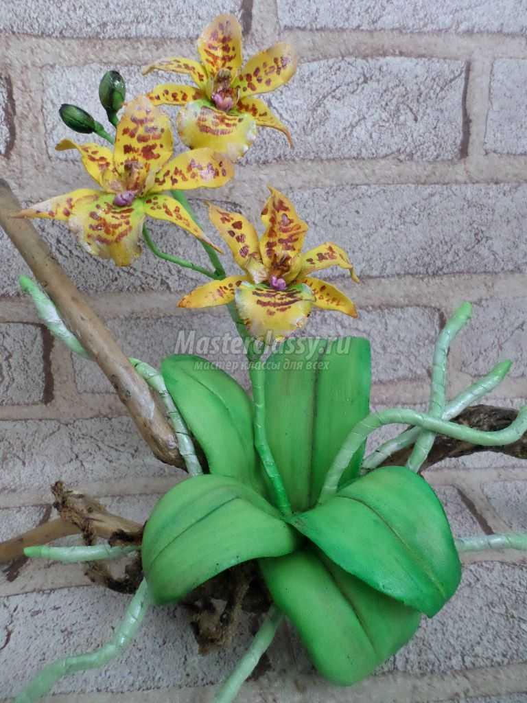 орхидеи из фоамирана для начинающих
