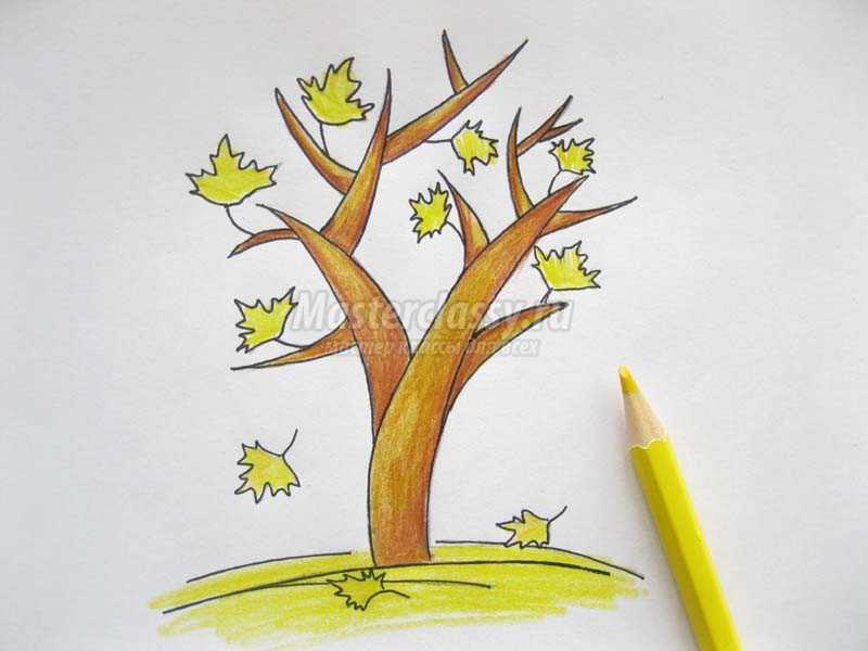 нарисовать осеннее дерево поэтапно