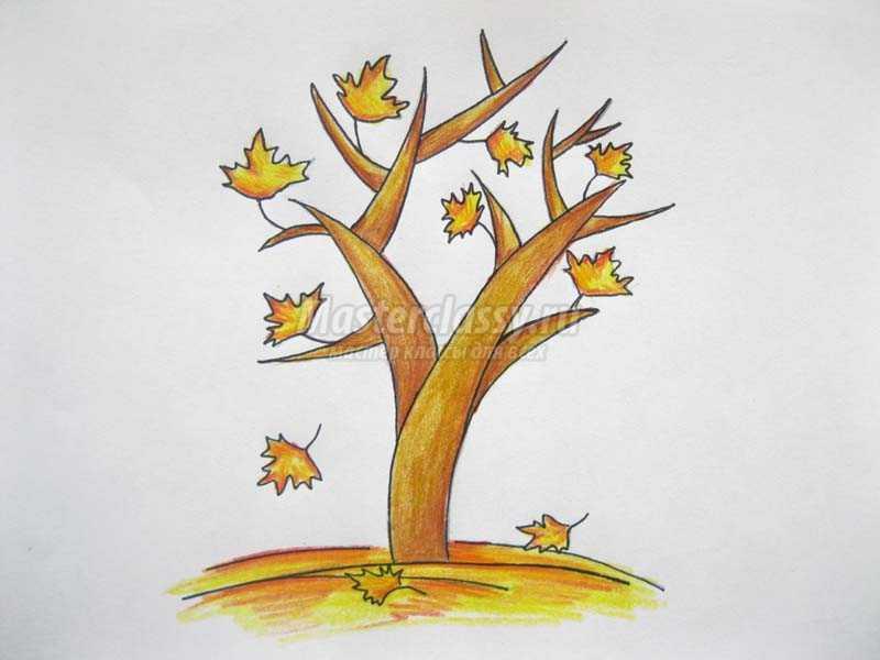 как нарисовать осеннее дерево карандашом
