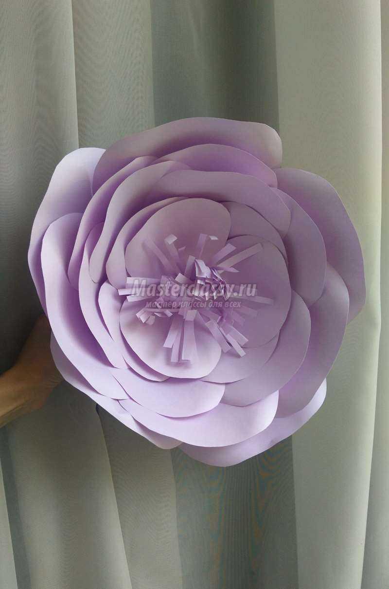 Как сделать из бумаги цветы фото фото 267
