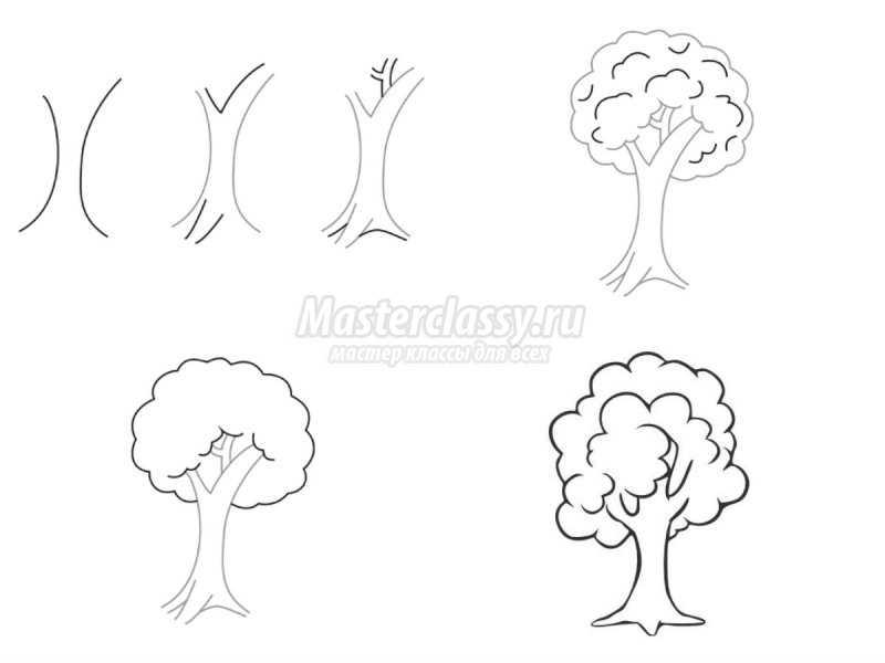 1540407586_collage5 Как нарисовать дерево