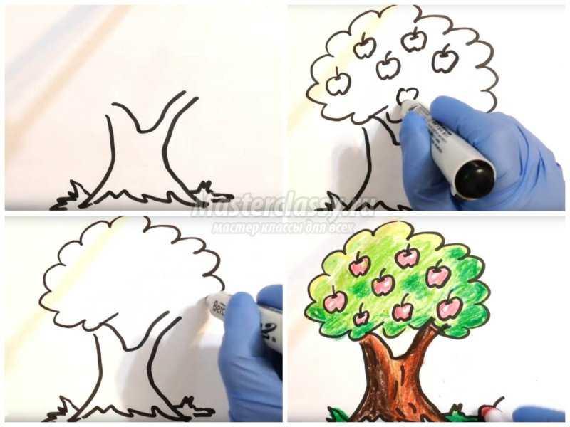 1540407625_collage1 Как нарисовать дерево